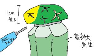 あってよかった竜神木!腐ったサボテンを接ぎ木で救え!