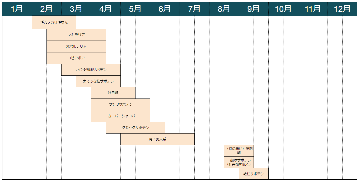 サボテンの植え替えの適期表