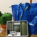 IKEAでサボテンのインテリア的なやつを買ってきたぞ!