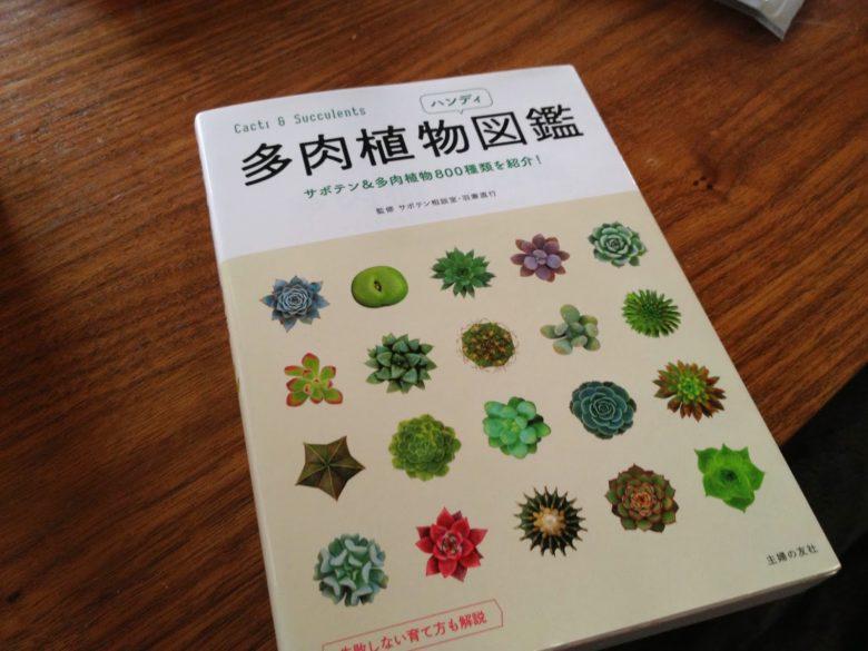 多肉植物図鑑